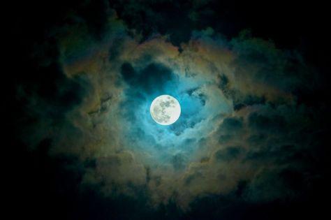moonfever