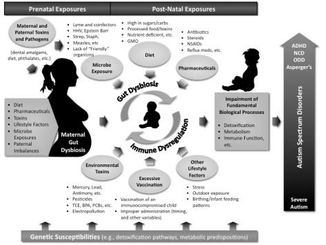 Autism-Causal-Factors1