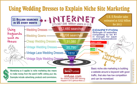 Niche-market-infographic