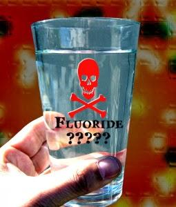Pineal fluoride