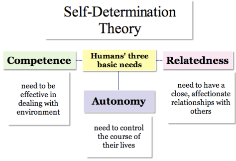 Self Determination Development theory