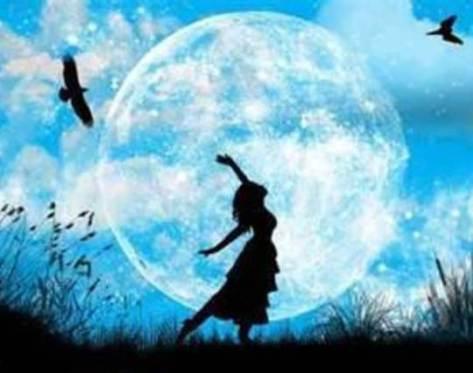 blue-moon-garden