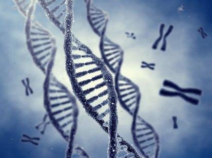 z17278045V,Helisa-DNA
