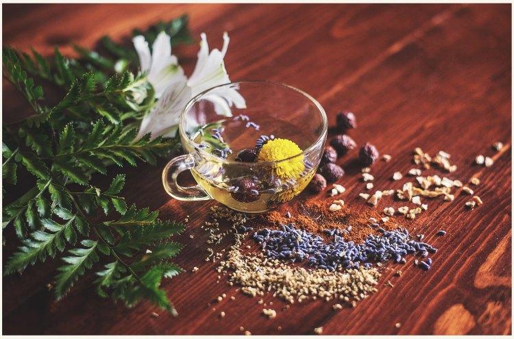 herbalmedicine2.jpg